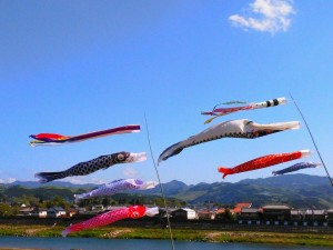 吉野川の鯉のぼり