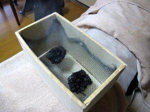 箱灸の中の状態箱灸の中 網の上でもぐさが燃えている 蓬庵にて撮影