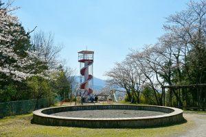 高野口公園(庚申山) 桜