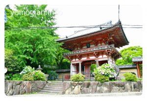 国指定重要文化財の桜門 久安寺 kyuuannji