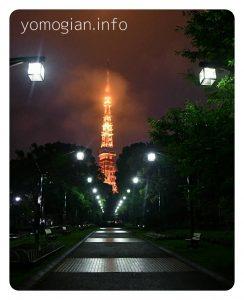 芝公園4号地 夜景の東京タワーの写真