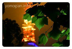 増上寺からの東京タワーの写真