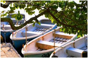 ボートのりばの写真