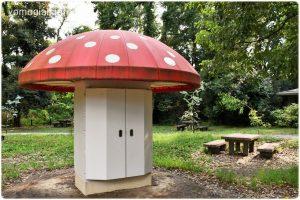 京都府立植物園の写真 きのこ文庫