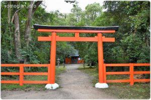 半木神社(なからぎじんじゃ)