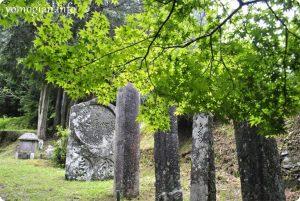 雨の丹生都比売神社の写真(107)