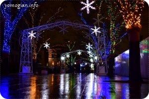 雨の日曜に中之島公園でやっているOSAKA光のルネサンスへ!