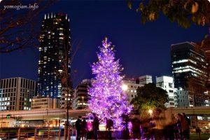 OSAKA光のルネサンス2019の写真 クリスマスツリー