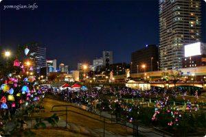 OSAKA光のルネサンス2019の写真 バラ園
