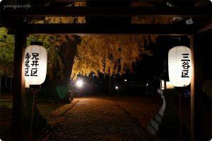 丹生酒殿神社の境内の中からの写真