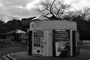 みさき公園の写真
