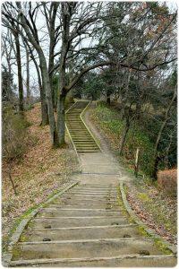 甘樫の丘 階段