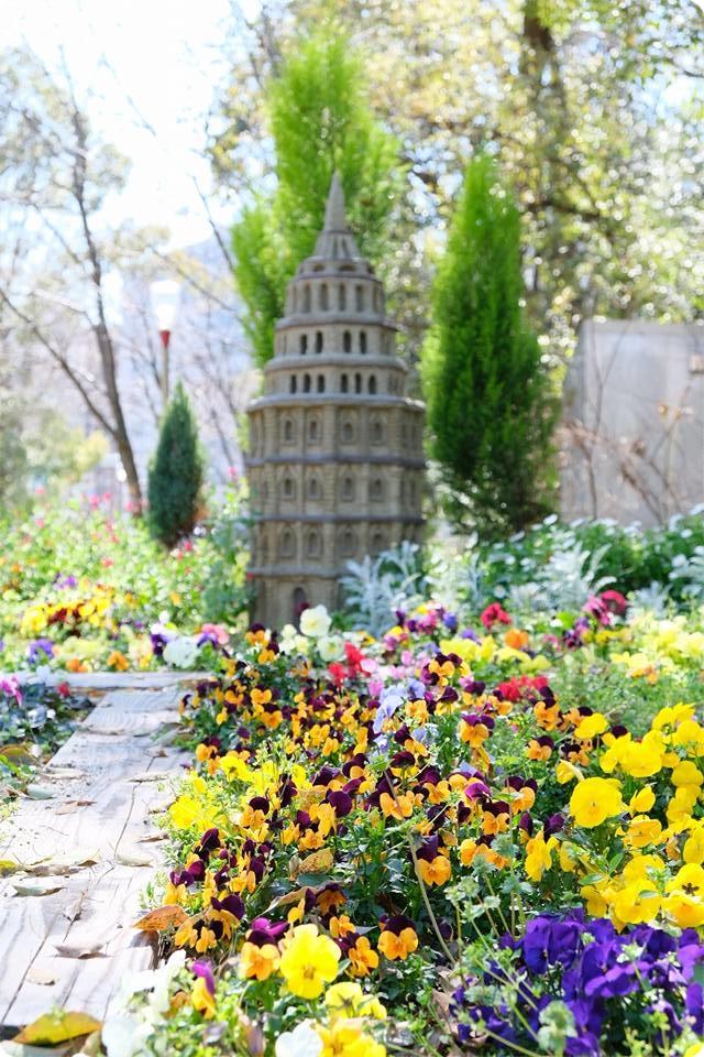 靱公園の写真 花壇
