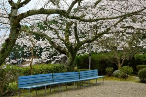 伏見山菩提寺の写真