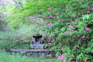 高野口公園(庚申山)