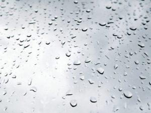 雨の日 水滴 雨の写真
