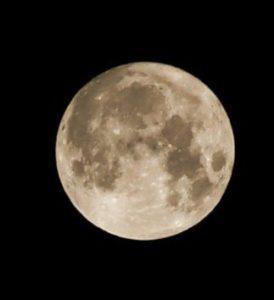 十五夜  満月の写真