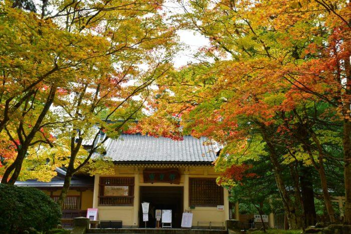 霊宝館 霊宝館の前も色とりどりのモミジで綺麗な紅葉スポットです。