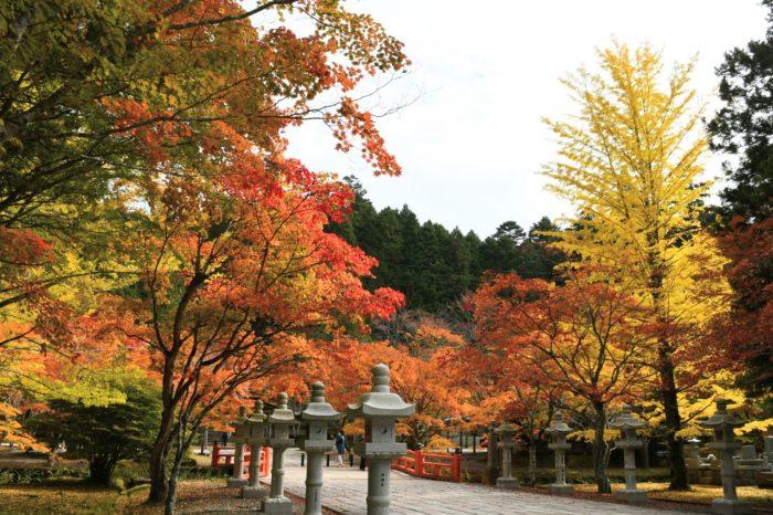 英霊殿 英霊殿のあたりも紅葉がとても綺麗です。多くの方が紅葉を楽しまれていました