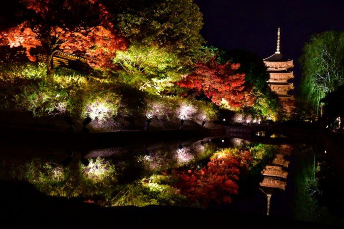 東寺のライトアップ 写真 絶景