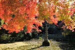 延命寺 河内長野市の写真