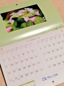 咲くやこの花館 カレンダー