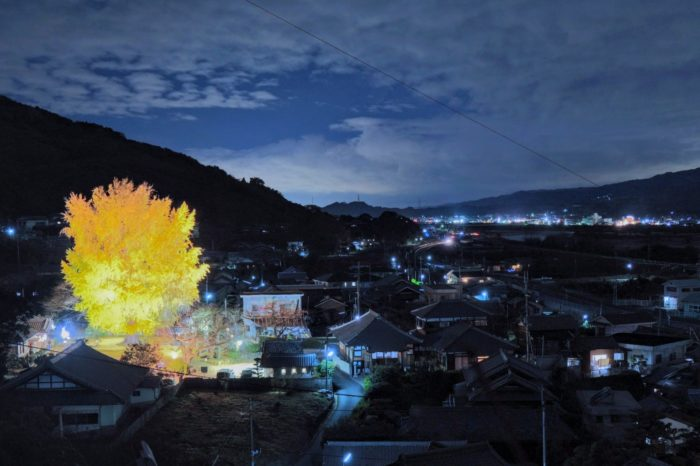丹生酒殿神社のライトアップ